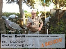 sponsor bosetti