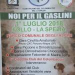 Club Italiano del Colombaccio La Spezia