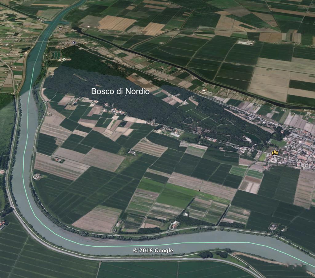 Bosco di Nordio oltre il fiume Adige (Veneto)