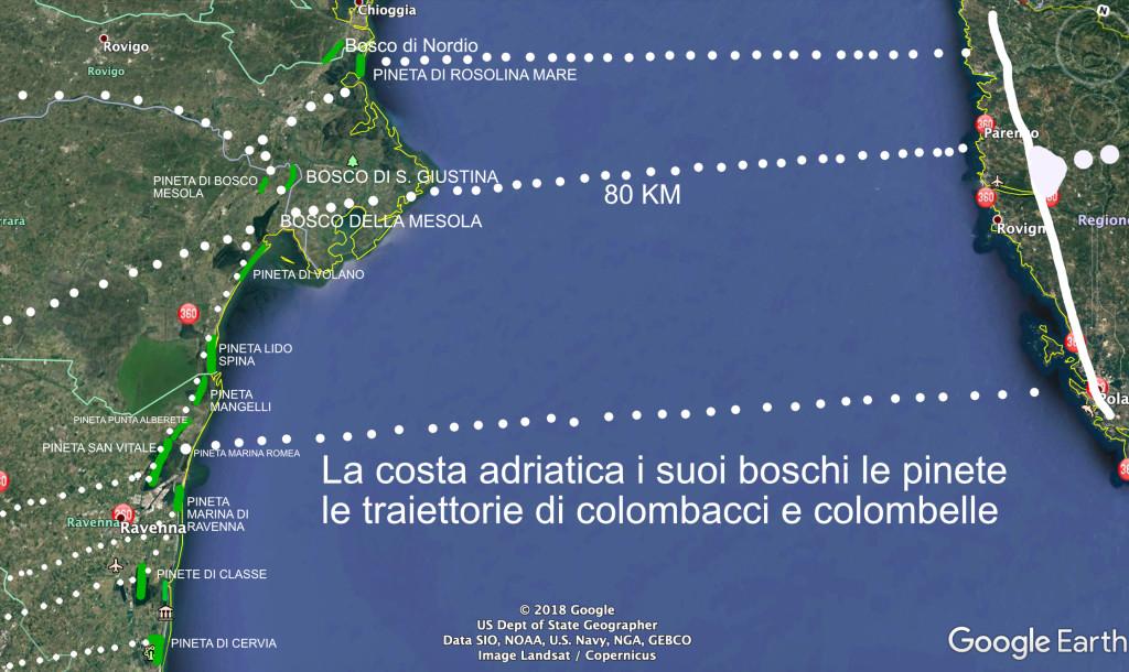 Costa boschi traiettorie