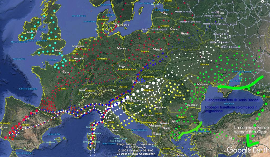 traiettorie migrazione colombaccio sull'Europa