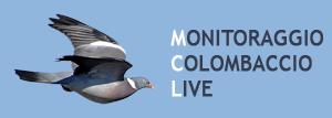 monitoraggio colombaccio live logo mobile